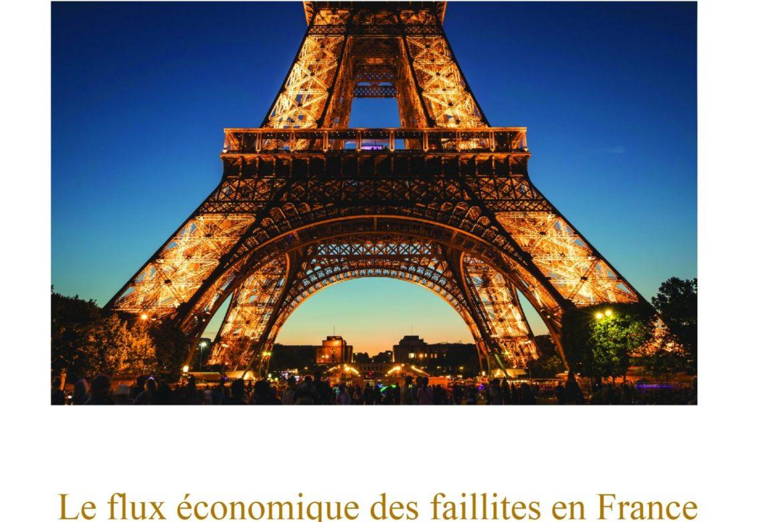 Le flux économique des faillites en France, 1820-1983: essai sur la mortalité des entreprises